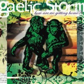 Gaelic Storm - Born to be a Bachelor