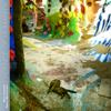 Evidence of Humanity - Mike Keneally & Marco Minnemann