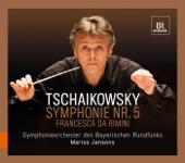Pyotr Il'yich Tchaikovsky - II. Andante cantabile con alcuna licenza