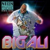 Neon Music Remix 2009 (Soundshakerz Radio Edit) - Single