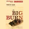 Timothy Egan - The Big Burn: Teddy Roosevelt and the Fire That Saved America (Unabridged)  artwork