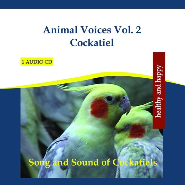 Bird Sounds for Birds: To Entertain Your Pet Bird, Parrots
