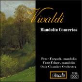Concerto for 2 Mandolins in G Major, RV 532: II. Andante artwork