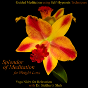 Guided Meditation Using Self Hypnosis Techniques and Yoga Nidra Relaxation for Weight Loss With Dr. Siddharth Shah - Splendor of Meditation for Weight Loss - Splendor of Meditation for Weight Loss