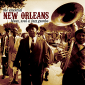 New Orleans Blues, Soul & Jazz Gumbo