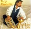 Tony Esposito - Kalimba de Luna artwork