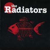 The Radiators - Deep In My Voodoo