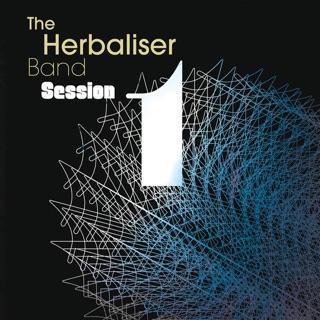 The Herbaliser Band