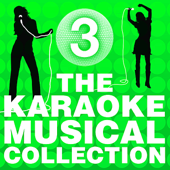 The Karaoke Musical Collection, Vol. 3