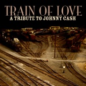 Laurie Lewis - Train Of Love