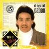 Oro Salsero: David Pabon