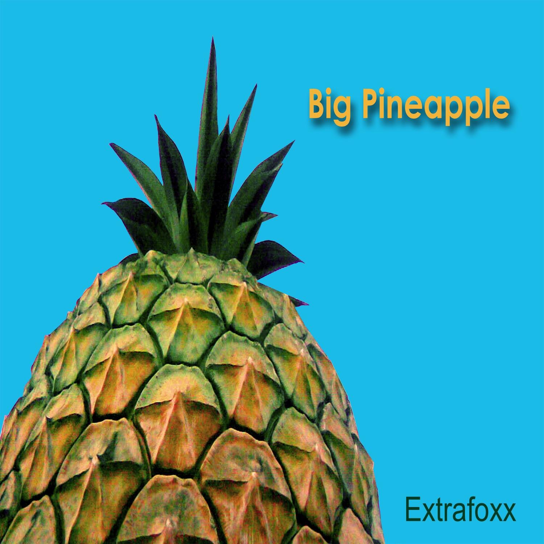 Big Pineapple - Single