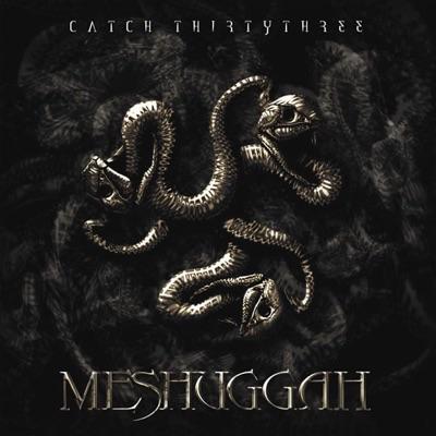 Chatch Thirtythree - Meshuggah