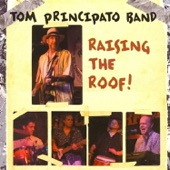 Tom Principato Band - Too Damn Funky
