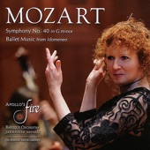Symphony No. 40 in G Minor, K. 550: I. Molto Allegro artwork