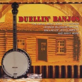Banjo Troubadours - Turkey In The Straw