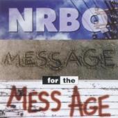 NRBQ - Designated Driver