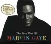 Marvin Gaye - I Heard It Through the Grapevine (Single Version) [Mono]