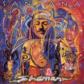 The Game of Love (feat. Michelle Branch) [Main / Radio Mix] - Santana