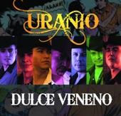 Uranio - Dulce Veneno (Duranguense)