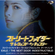 THE NEXT DOOR-INDESTRUCTIBLE- - EXILE - EXILE