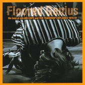 Floored Genius: The Best of Julian Cope and the Teardrop Explodes (1979-91)