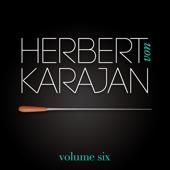 Herbert Von Karajan Vol. 6 : Les Plus Belles Valses De Johann Strauss (Johann Strauss)