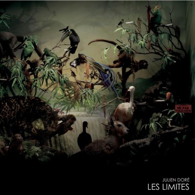 Les limites - Single - Julien Doré