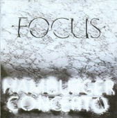 Focus - Birth