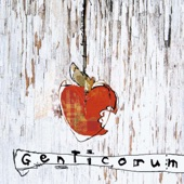 Genticorum - Bonnet D'âne