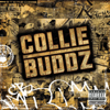 Collie Buddz - Come Around artwork