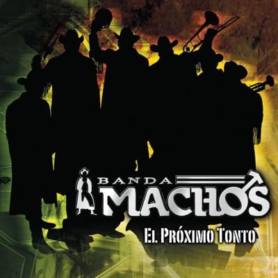 El Próximo Tonto - Banda Machos