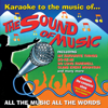 AVID Professional Karaoke - Karaoke to the Sound of Music & Mary Poppins (Professional Backing Track Version) artwork