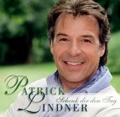 Patrick Lindner - Ich Hab' Dir Nie Den Himmel Versprochen (Version 2010)