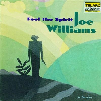 Feel the Spirit - Joe Williams
