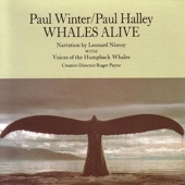 Humpback Whales - George And Gracie