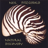 Neil FitzGerald - The River's Edge