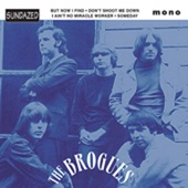 The Brogues - I Ain't No Miracle Worker