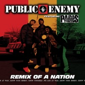 Public Enemy - Remix of a Nation