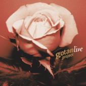 Gotan Project Live