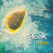 Flook - Wrong Foot Forward