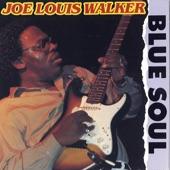Joe Louis Walker - I'll Get to Heaven On My Own