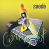 Suede - Trash artwork