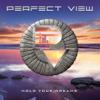 Perfect View - Closer bild