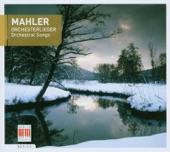GUSTAV MAHLER - Symphony #1 2nd Mov