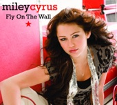Fly On the Wall - EP