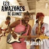 Les Amazones De Guinée - Meilleurs vœux