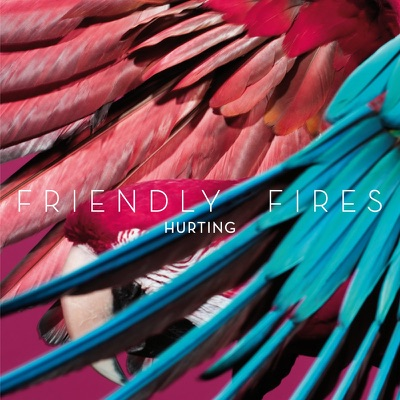 Hurting (Remixes) - Single - Friendly Fires