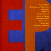 The Fiery Furnaces - Evergreen