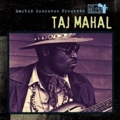 Taj Mahal - You're Gonna Need Somebody on Your Bond